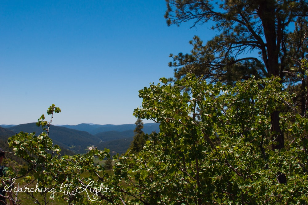 mount falcon colorado hiking trail, denver photographer, denver wedding photographer,
