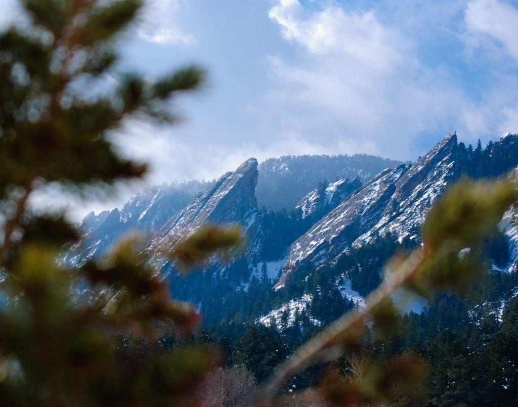 Evergreen trees framing the boulder Colorado flatirons