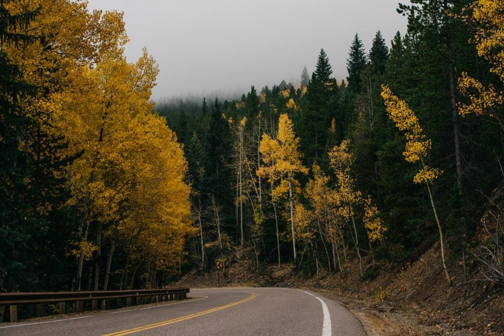 mountain road photo with aspen changing yellow