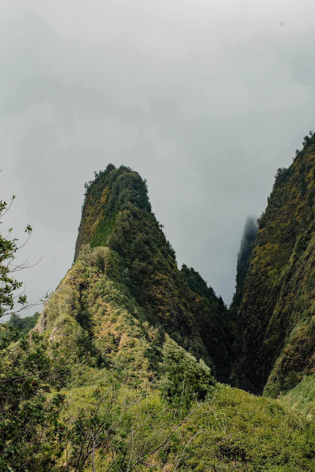 view of the Iao Valley needle on Maui