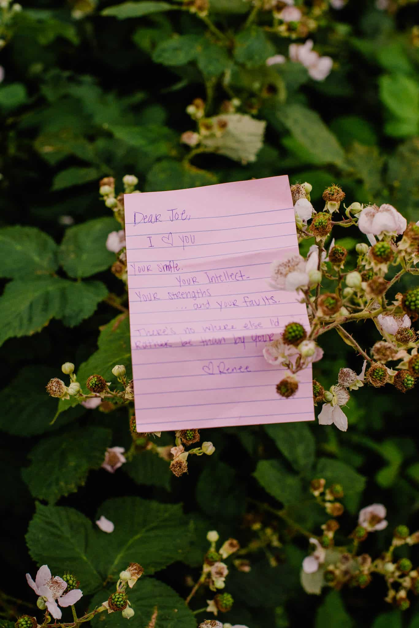 romantic love note in a bush for a great idea of romantic things to do for your wife