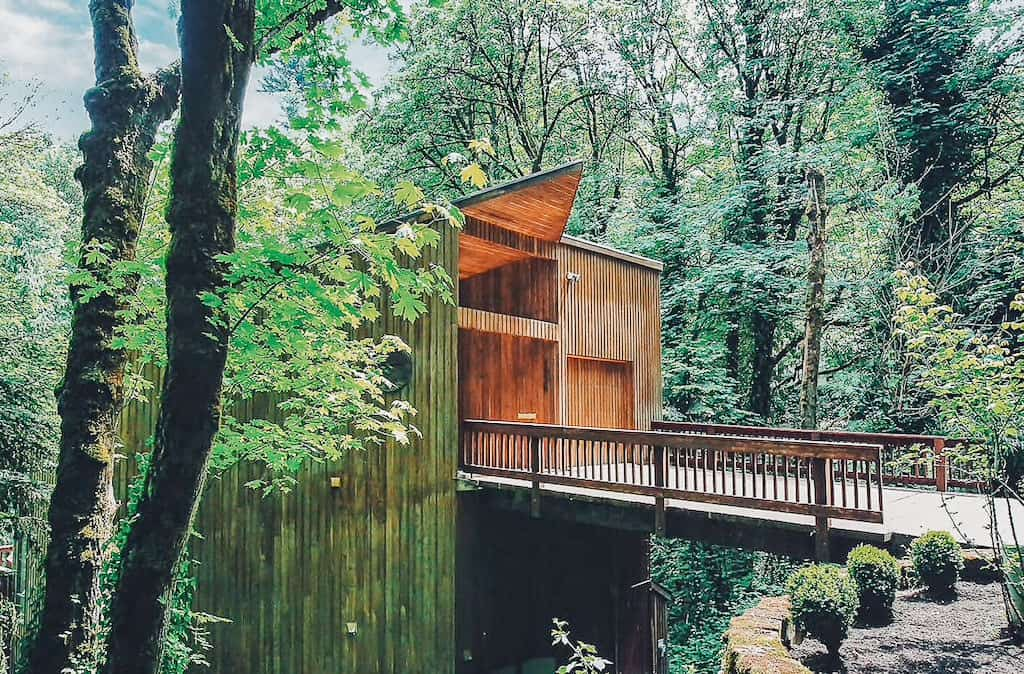 view of a walk way into a forest where a house is blended well into the trees