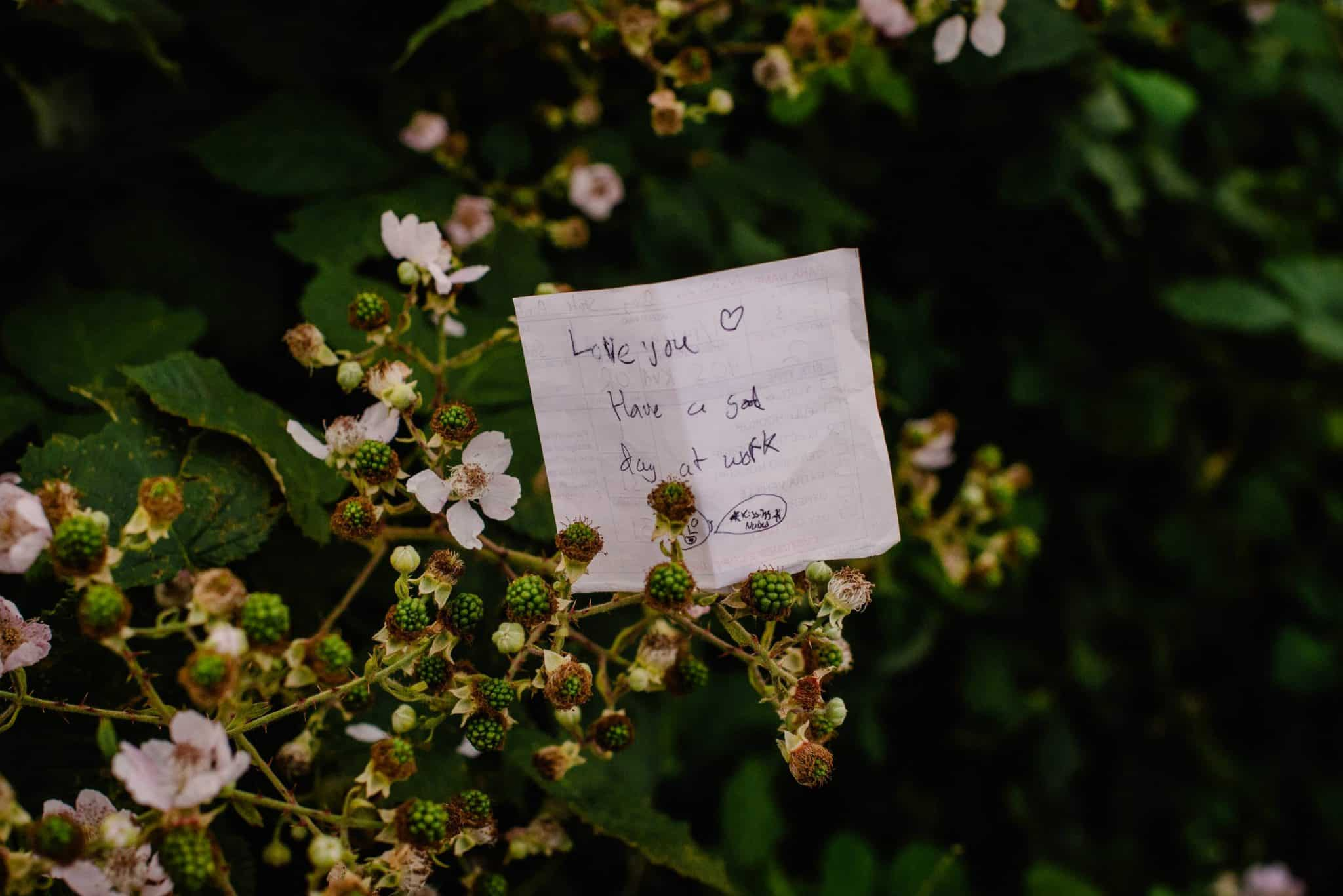 hand written love letter in flowers for a guide on how to write love letters and passionate love letters for him or her
